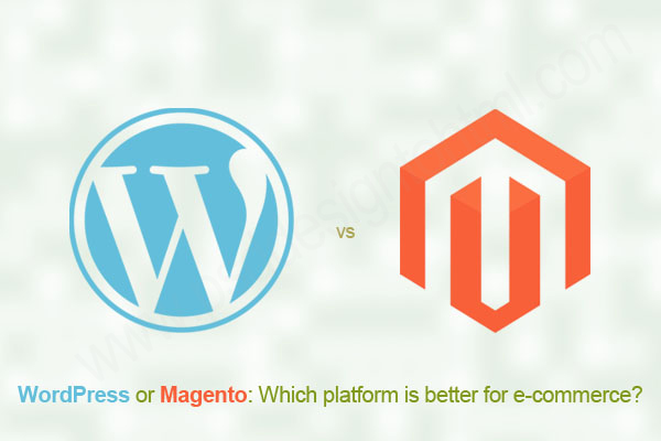magento cms and wp theme